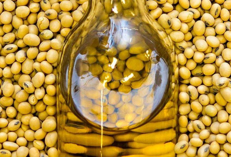 семена соевых бобов